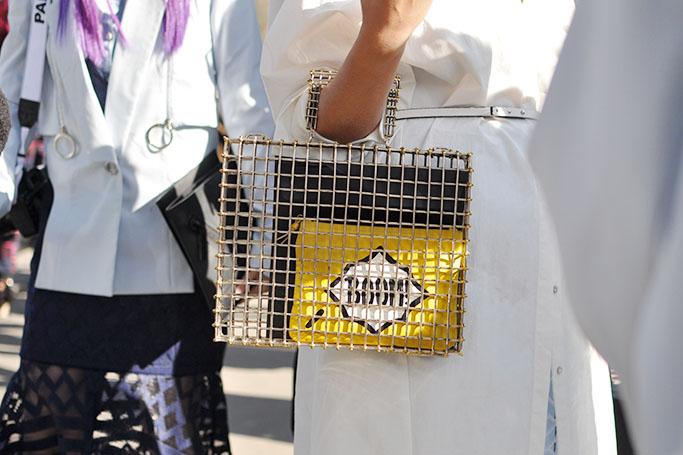 cage bag